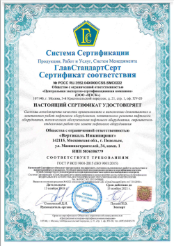 ISO 9001 Система менеджмента